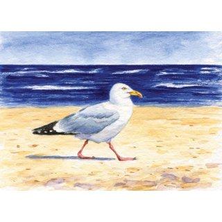 w28510-postkarte-moewe-am-strand