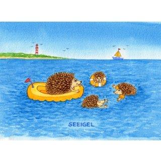 w28523-postkarte-a6-kuestentiere-seeigel