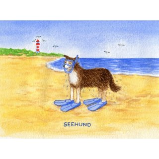 w28528-postkarte-a6-kuestentiere-seehund
