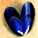 Spiral-Notizbuch 18x22 Miesmuschel