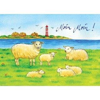 w28110-postkarte-schafe,-moin-moin