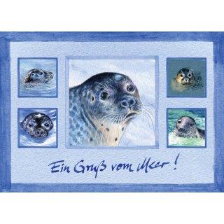 w28152-postkarte-a6-collage-robbenkopf