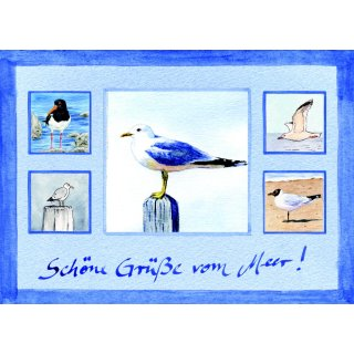 w28805-postkarte-collage-moewen-pfahlmoewe