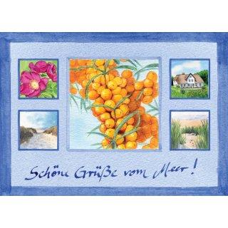 w28808-postkarte-a6-collage-sanddorn