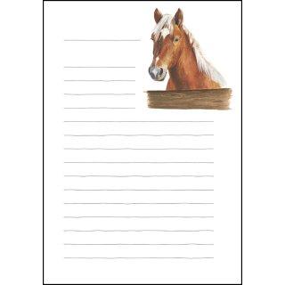 w25461-briefpapierset-a5-lieblingspferd-mit-linien
