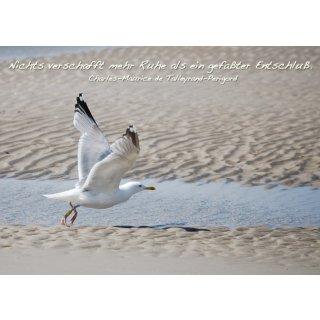 w28644-foto-postkarte-a6-moewe