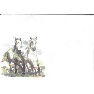 w26160-briefumschlaege-c6-zwei-pferde